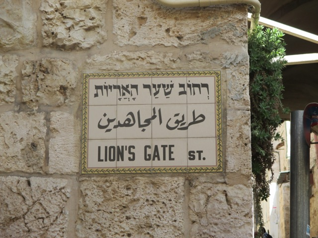Image result for the mount of olives lions gate