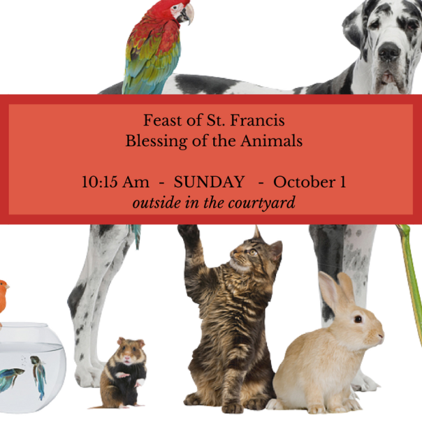 Feast of St. FrancisBlessing of the Animals10-15 Am This SundayOctober 4 (1).png