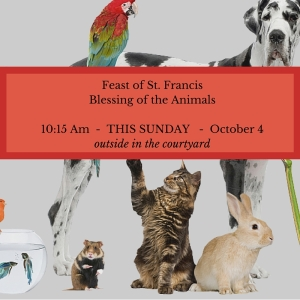 Feast of St. FrancisBlessing of the Animals10-15 Am This SundayOctober 4